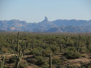 Superstitions Mountains in Mesa, AZ