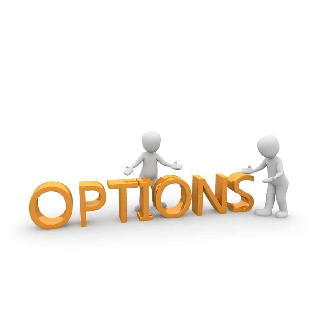 Options are a great thing; Phoenix Title Loans has the options for YOU!